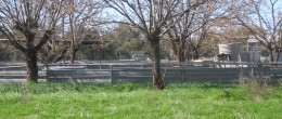 (GO9)  GILGANDRA 954 Hectares 2350 Acres 2 houses. $1.4m