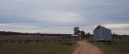 (js118)  PARKES   987 acres (399Ha) 2 Houses & Sheds