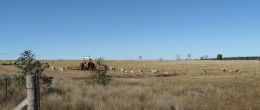 "DUBBO/Ballimore ""SUNNYSIDE EAST"" 1551 Acres(628.09 Ha)  $385,000"
