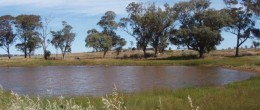 "(js15) PEAK HILL "" Part Baroona"" 109 Acres(44Ha)   $98,100"
