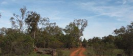 (js77) COOLABAH 7100 plus Acres or 2900Ha  $140,000 UNDER OFFER
