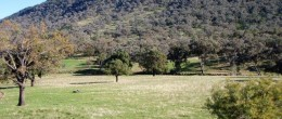 (js140) Eugowra/Parkes 233 Hectares 575 Acres House  $380,000