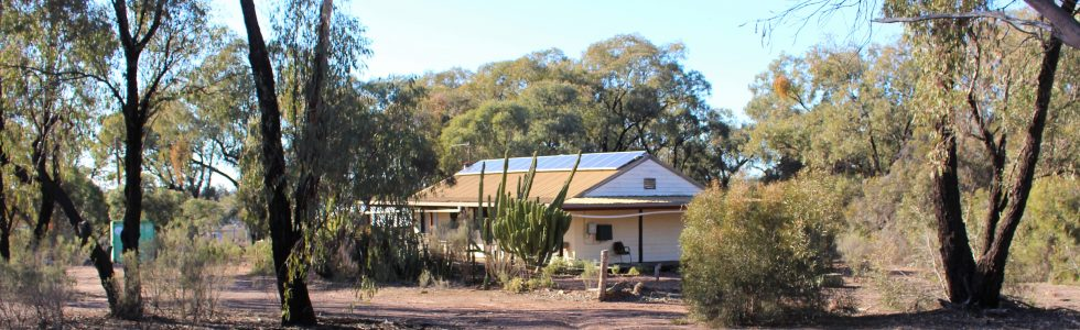 (GO196)  Dubbo 51L  Minore Road  21.92 Ha 55 AcresHouse+Shed Auction on SITE